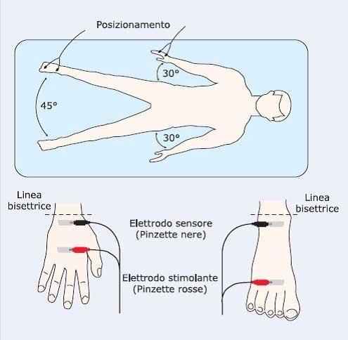 dimare-biologa-studionutrizione-bioimpedenziometria