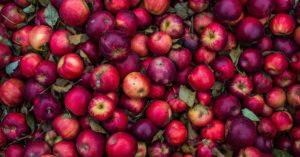 muffins-mela-cannella-Patrizia Di Mare-nutrizionista-Studio di Nutrizione-Augusta-Siracusa-Lentini
