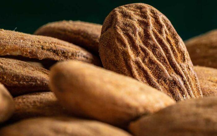 mandorla-vitamine-minerali-Patrizia di Mare-nutrizionista-Siracusa-Augusta-Lentini-Studio di Nutrizione